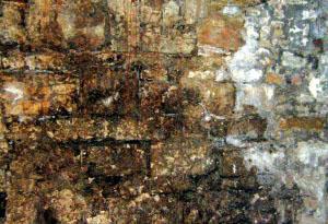muri-controterra
